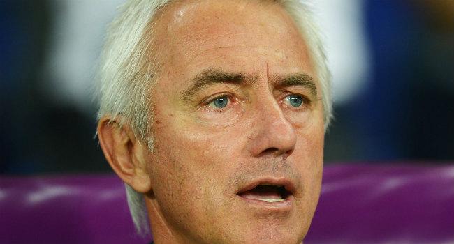 Bert van Marwijk nieuwe trainer HSV: Rafael van der Vaart ...