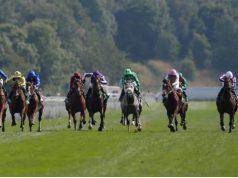 Wedden op Prix de l'Arc de Triomphe paardenrace: odds favoriet Postponed Getty