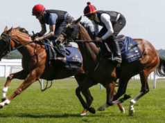 Gratis weddenschap paarden bookmakers Royal Ascot bet Getty