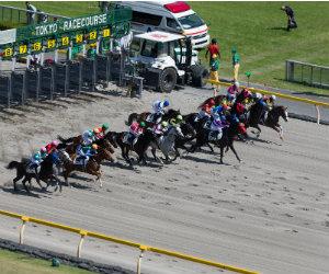Wedden op sport | Voorspellingen sport bij de bookmakers Getty
