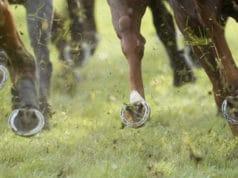 Favorieten bookmakers voor het wedden op Grand National paardenraces 2019 | Getty