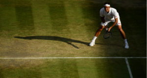 Voorspellingen Wimbledon finale Djokovic - Federer bookmakers | Getty