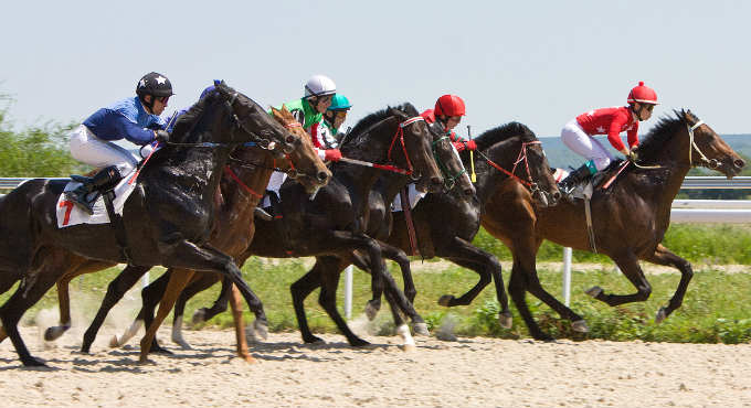 Bookmakers: Paarden wedden tips Gold Cup Cheltenham Festival 2020