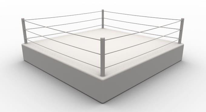 Soorten vechtsporten: boksen